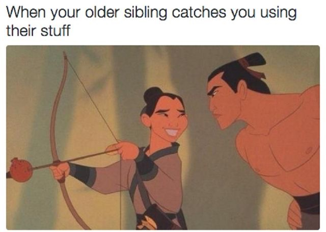 Geschwister Meme