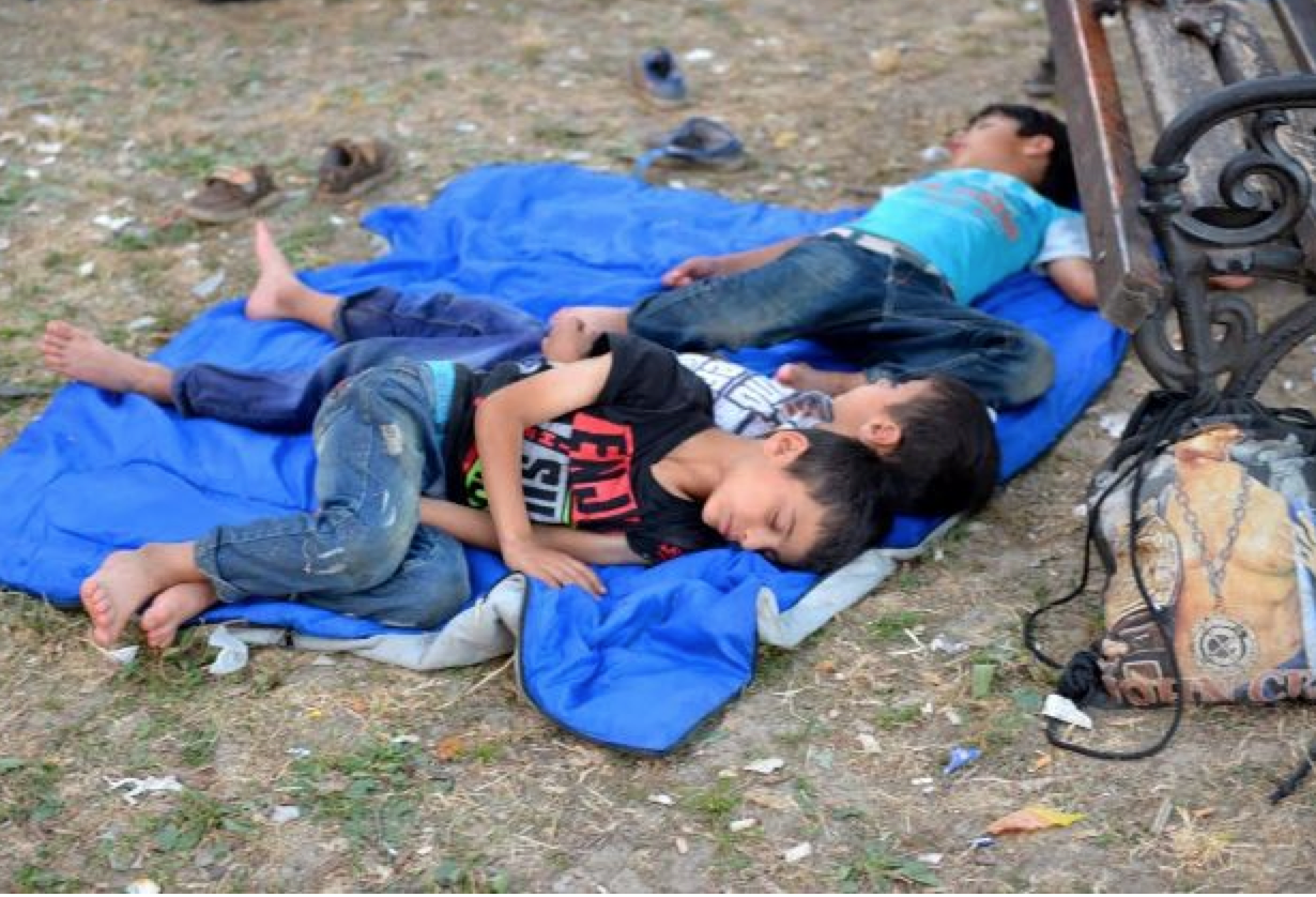 Syrien, Flüchtlinge, Serbien