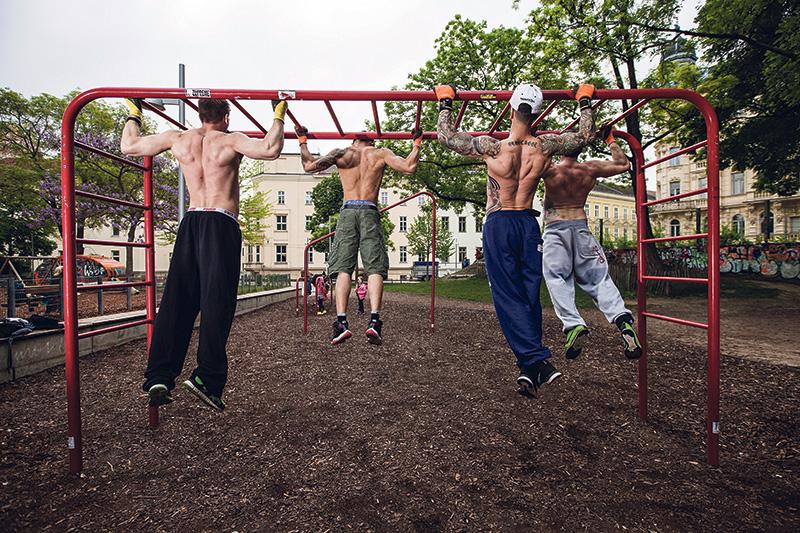Fitness, Männer, Wien, Training, Viech