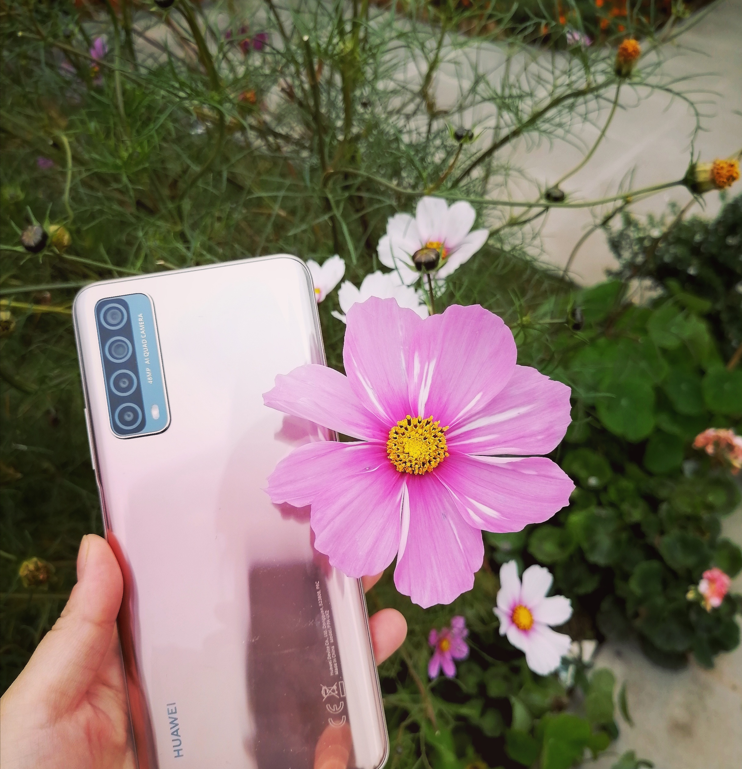 Huawei_ad2