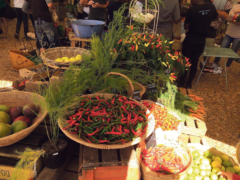 Dieses Gemüse wird direkt in der Stadt angebaut.