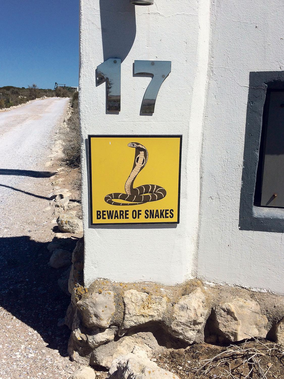 Ehrlich, wir haben keine Schlangen gesehen.